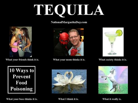 Funny Tequila Memes - meme national margarita day tequila meme funny stuff pinterest it is meme meme and blog