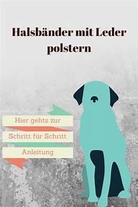 Hunde Sachen Kaufen : diy ledergepolstertes hundehalsband zubeh r f r hunde hundehalsband hundehalsband ~ Watch28wear.com Haus und Dekorationen