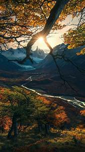 Wallpaper, Forest, Tree, Mountains, Autumn, Hd, Nature, 15808