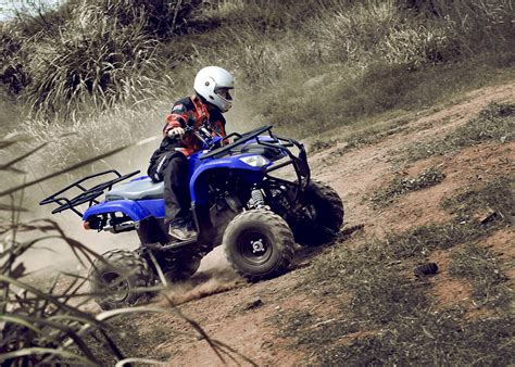 Blue 250cc Utility Atv Quad Bike 4 Wheel , Five Speed With