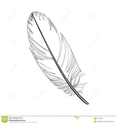 plume d oiseau dessin smoth tir 233 par la plume d oiseau tropicale et