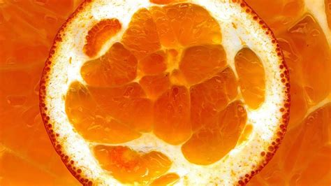 1080p Orange Fruit Wallpaper Hd by Wallpaper 1920x1080 Orange Slice Fruit