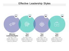 leadership styles  geeks