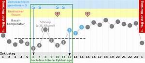 Fruchtbare Tage Berechnen Unregelmäßiger Zyklus : eisprung traum experiment ~ Themetempest.com Abrechnung