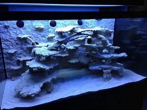 Aquarium Gestaltung Bilder : erfahrungen mit der riffsystem keramik aus bayern www ~ Lizthompson.info Haus und Dekorationen