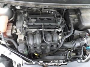 Moteur Ford Focus : usag ford focus ii 1 6 ti vct 16v moteur hxda autorecycling n kossen ~ Medecine-chirurgie-esthetiques.com Avis de Voitures