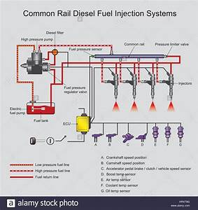 Download This Stock Vector  Common Rail Direct Fuel