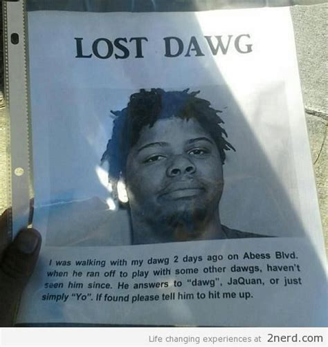 Lost Dog Meme - lost dawg2 nerd 2 nerd2 nerd
