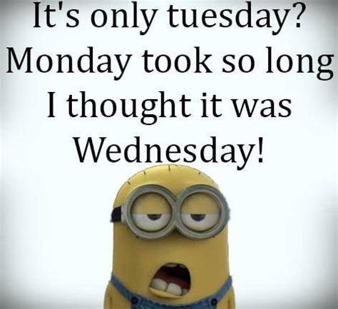 Funny Tuesday Meme - funny minion quotes funny pictures pinterest awesome things funny and thoughts