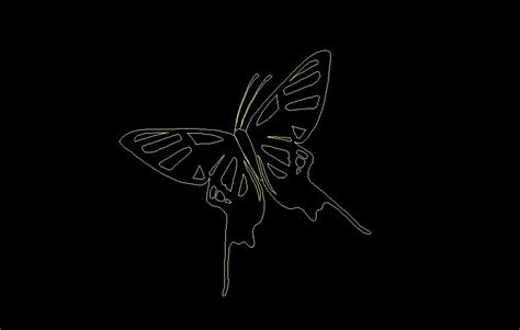 flying butterfly insect animal top view plan  dwg block