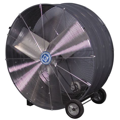 Fasco Mvb36b 36 In Industrial Grade Belt Drive Drum Fan. Order Promotional Pens Stock Trading Training. Cheap Online Certificate Programs. Degrees In Health Education Sba Micro Loan. How To Register My Domain Self Help Workshops. Business Math Worksheets High School. Ear Wax Removal Vacuum Commercial. Colorado Architecture Schools. Rock Hill Telephone Company San Antonio Beds