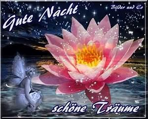 Schöne Gute Nacht Sprüche : gute nacht bilder gute nacht gb pics gbpicsonline ~ Udekor.club Haus und Dekorationen