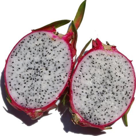 fruit taste what does dragon fruit taste like