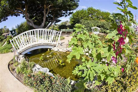 Garden : South Coast Botanic Garden