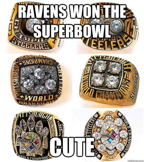 Steelers Vs Ravens Meme - ravens won the superbowl cute steelers quickmeme