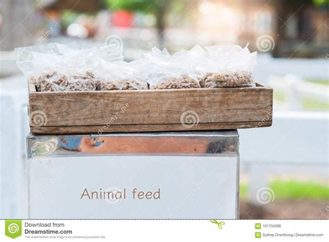 animal feed stock photo image  nutrition healthy