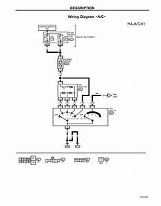 2005 Taurus Transmission Wiring Diagram