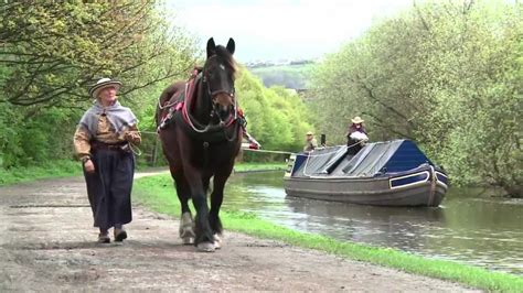 Horses On A Boat by Canal Boat Horses Bingley Five Rise
