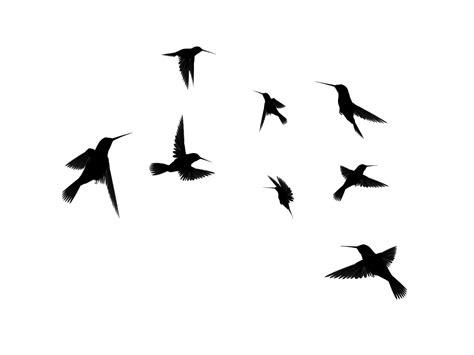 Flying Bird Silhouette Clipart