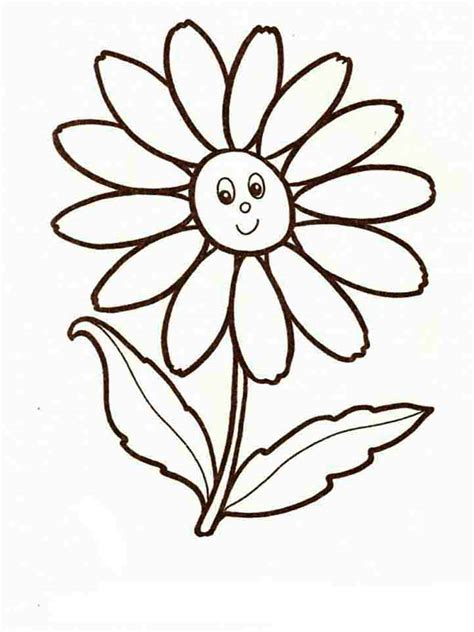 Coloring Flower by Chamomile Flower Coloring Pages And Print