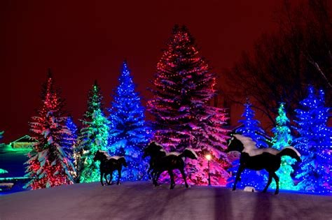 ooh shiny a roundup of the best christmas light