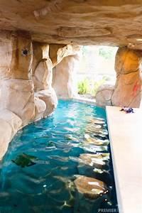 Freeform, Custom, Pool, With, Grotto, Cave, In, Gilbert, Arizona
