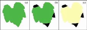 A   Pumpkin Leaf With Homogeneous Green Colour    B