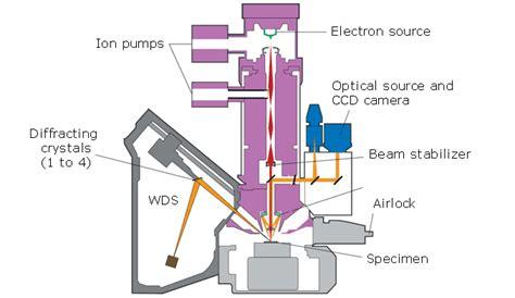 introduction  electron probe microanalysis epma