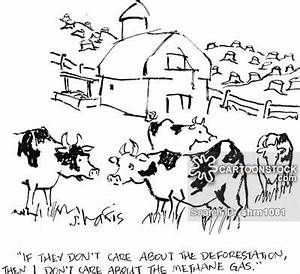 Deforestation Cartoons and Comics - funny pictures from ...