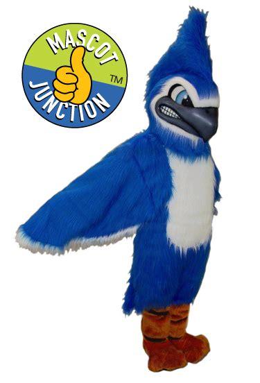 blue jay mascot mascot junction kid friendly mascots