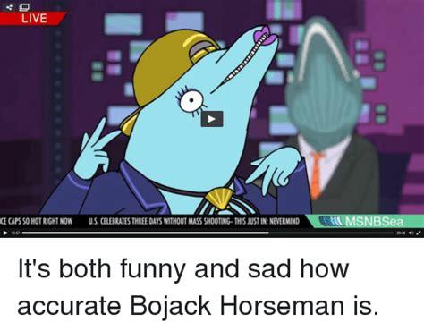 Bojack Horseman Memes - funny bojack horseman memes of 2017 on sizzle 9gag