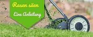 Rasen Richtig Säen : neuen rasen s en anlegen bersichtliche anleitung ~ A.2002-acura-tl-radio.info Haus und Dekorationen