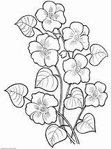Flower Coloring Pages Printable Embroidery Flowers Painting Petrykivka sketch template