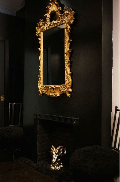 black fireplace interiors  color