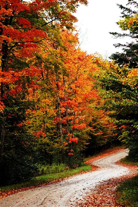 fall roadway pictures   images  facebook