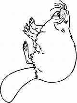 Beaver Coloring Pages Print Animal Printable Recommended Mycoloring Animals sketch template
