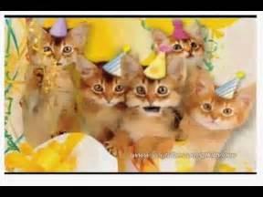 cats singing happy birthday kittens singing happy birthday song