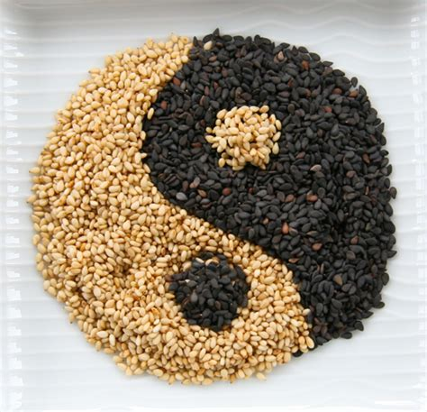 toasted sesame seeds toasting sesame seeds and life savor the taste of oregon