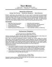 free resume writing sles careerperfect sales management sle resume