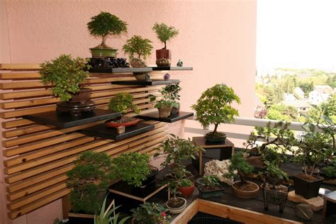 Bonsai  Gemeinschaft Mein Bonsai Garten