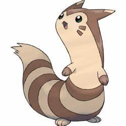 Furret Pokémon
