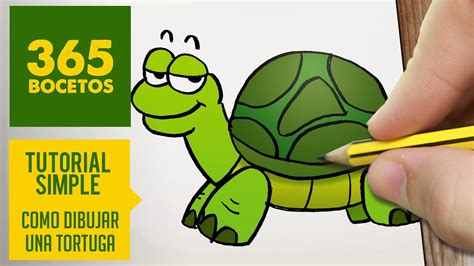 como dibujar una tortuga facil paso  paso kawaii aprender  dibujar  ninos  mayores youtube