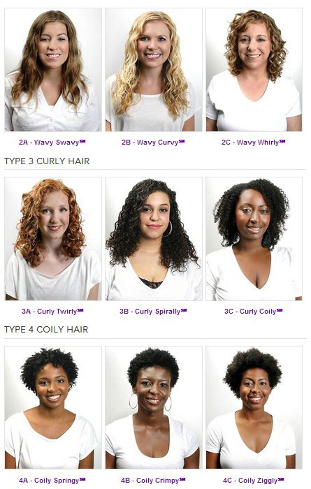 Categories Of Hair by Hair Types Hair Typing Systems And You S Folk