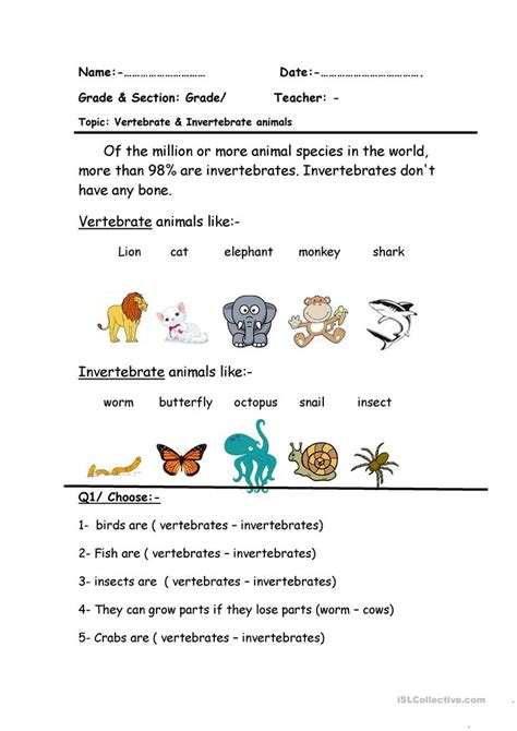 worksheet vertebrates and invertebrates worksheets grass