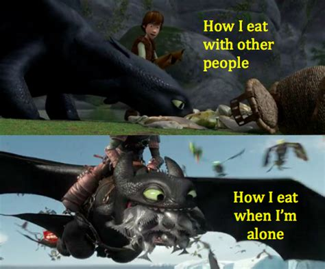 How To Train Your Dragon Memes - how to train your dragon 1 and 2 meme by moviememes on deviantart