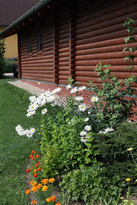 Ciemos pie Rūķu ģimenes Priekuļos, kur vides skaistums ir vienkāršībā un samērībā | Praktiski.lv