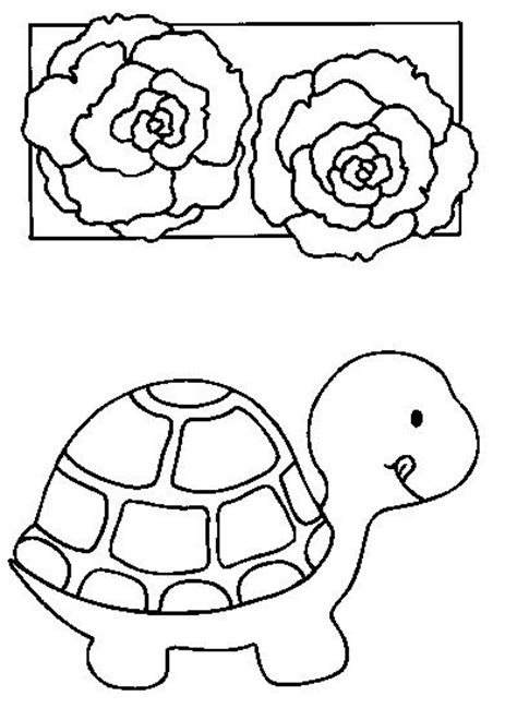 dessins de coloriage tortue  imprimer