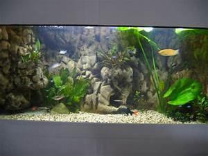 Idee Decoration Aquarium : exemple id e d co avec aquarium ~ Melissatoandfro.com Idées de Décoration