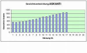 Askanti  U2013 Hundezucht Poetsch