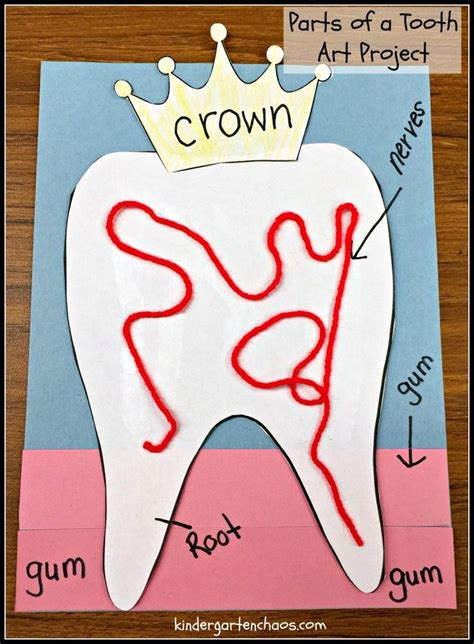 ultimate list of dental health for the classroom kinder 552   135f0ab008d779dba9843b7c8aa622c4